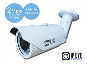 Уличная 2Мп IP-камера IPEYE-3836