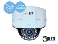 уличная антивандальная 2мп ip-камера ipeye-3837a+fish eye