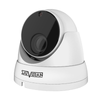 Антивандальная 2Мп IP-камера Satvision SVI-D323V SD SL